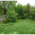 Barrie Real Estate 9 McCuaig  rear yard